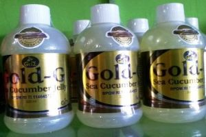 obat herbal asam lambung jelly gamat gold g